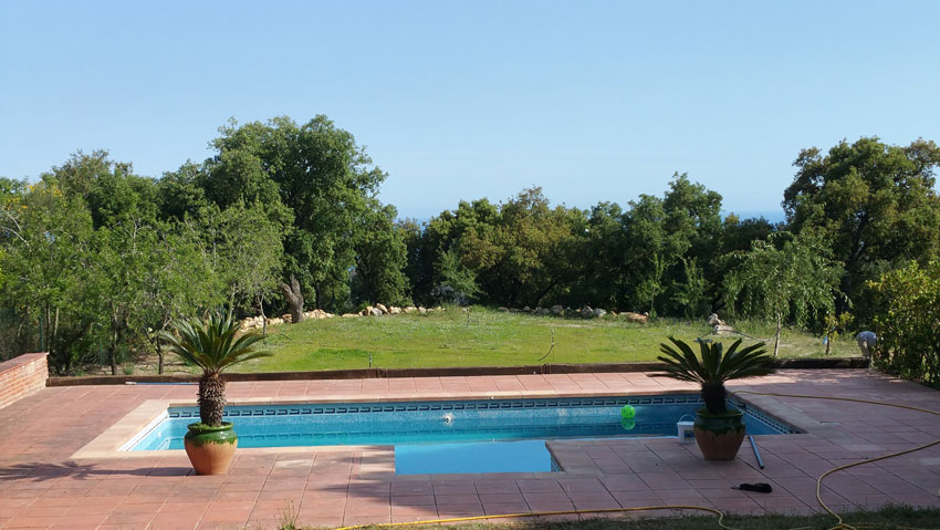 Poolview and almond trees
